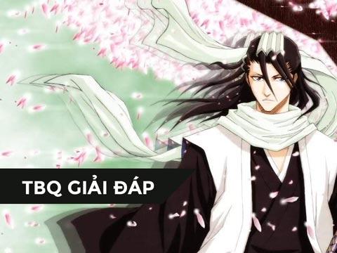 Manga-Guide0Bleach