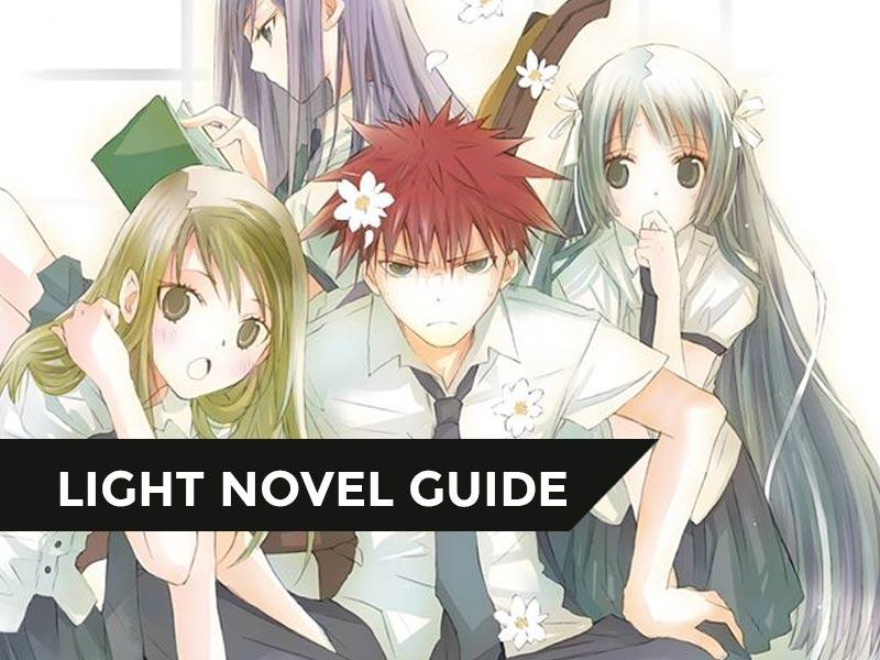 【LIGHT NOVEL GUIDE】[Khi Hikaru Còn Trên Thế Gian Này……] – Chuyện về những nàng hoa