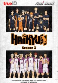 Anime_Haikyuu-3_cover